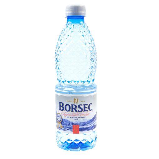 Apa plata 0.5L Borsec
