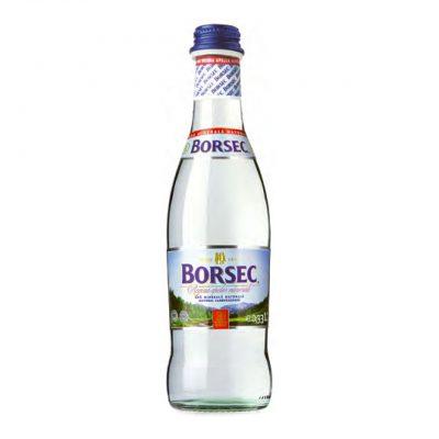 apa minerala carbogazoasa Borsec 0.33L