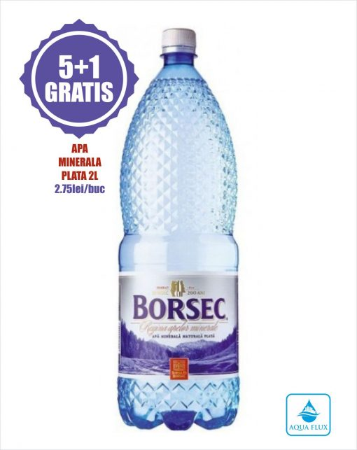 Apa minerala plata 2L Borsec promo 5+1 gratis